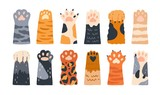 Fototapeta Fototapety na ścianę do pokoju dziecięcego - Different cartoon colored cat paws set vector graphic illustration. Collection of various cute cartoon domestic animal foot isolated on white background. Funny fur pet dangerous claws