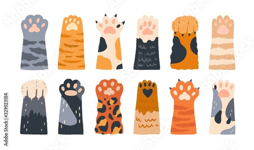 Different cartoon colored cat paws set vector graphic illustration Fototapete
