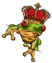 Vector Illustration Of Green Frog On White