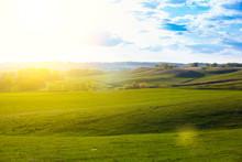 Green Field And Beautiful Suns...