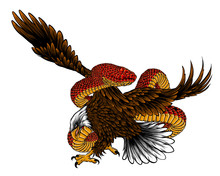 Illustration Of Eagle Fight With Snake Vector