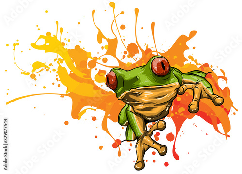 Fototapeta Little frog. Vector illustration of a cute little frog.