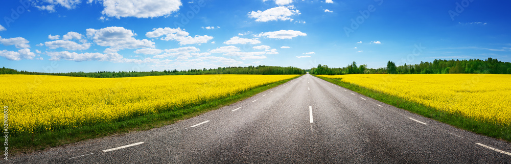 Fototapeta Road panorama on sunny summer day in countryside