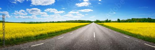 Fototapeta Road panorama on sunny summer day in countryside obraz