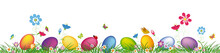 Colorful Easter Eggs And Spring Wild Flowers.