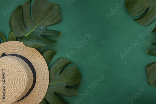 Tropical green leaves palm. Summer background