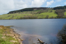 Tranquil Water With Hilly Pastures And Woodland In The Background At Gouthwaite Reservoir,Nidderdale,which Is Situated Between The Small Villages Of Wath And Ramsgill,North Yorkshire.