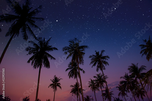 Obraz Starry night sky against with coconut palm tree and romantic evening twilight sky - fototapety do salonu