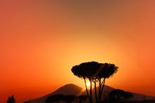 Volcano Vesuvius Naples South ...