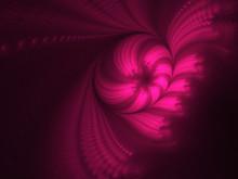 Pink Fractal On Black