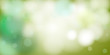 nature view of green leaf on blurred greenery background in garden using background