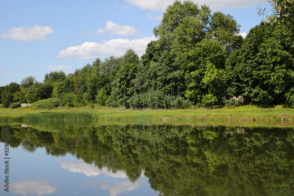 Fototapeta Reflection of white clouds and forest in a river or lake on a sunny day, nature. - obraz na płótnie