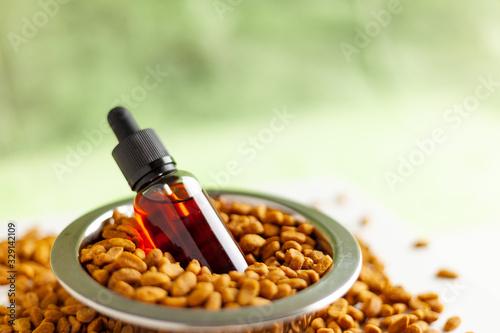 Fototapeta CBD and medical marijuana for pets, Food delicacy for dogs and cats, marijuana CBD oil obraz
