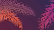 Tropical Purple Background With Palm Leaves