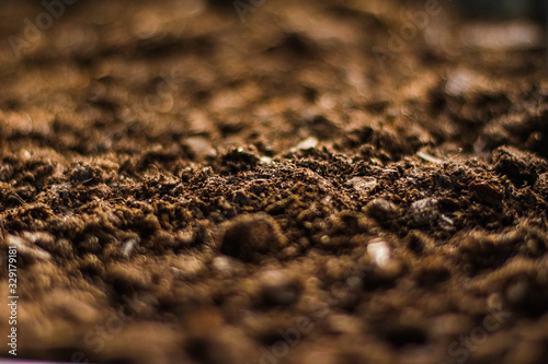 Fotografie, Obraz Earth ground texture as background, nature and environment