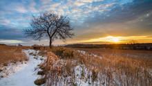 Dawn Over A Snowy Field