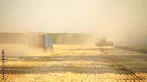 Aufkleber - Harvesting of wheat. Combine harvesters at work. The truck rides on the field. Slow motion