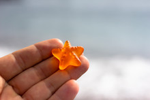 Starfish Is A Symbol Of Travel...