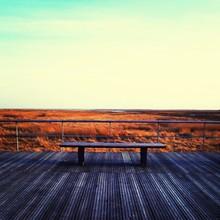 Bench On Boardwalk