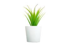 Artificial Aloe Vera Flowers G...