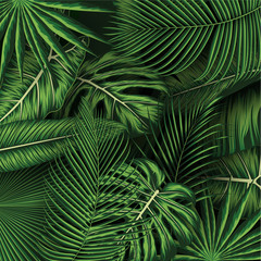 Fototapeta Botaniczne Tropical summer leaves background with jungle plants