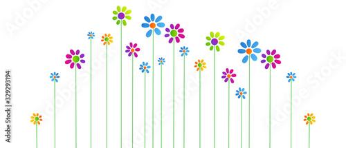 fiori, piante, primavera Tapéta, Fotótapéta