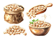 Chickpeas Set. Hand Drawn Watercolor Illustration  Isolated On White Background