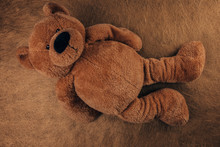 Teddy Bear Isolated On Brown B...