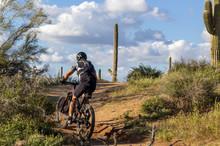 Mountain Biker On Desert Trail In Arizona