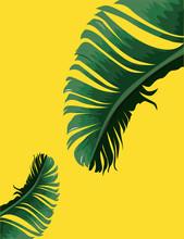Tropical Palm Leaves, Jungle L...