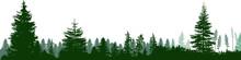 High Green Fir Trees Forest Pa...