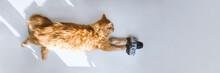 Red Cat With Photo Camera Lyin...
