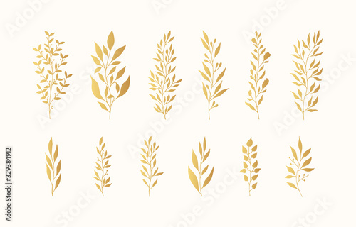 Leinwand Poster Set of golden floral branches and herbs silhouettes
