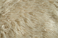 New Thick Wool Ecru Carpet Wit...