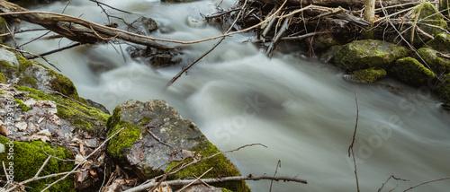 Mały strumyk pośrodku skandynawskiego lasu