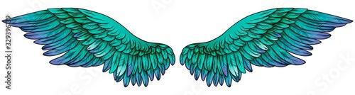 Fotografiet Beautiful gradient turquoise green violet wings, vector