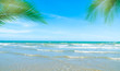 Coconut trees on the beach for summer vacation concept