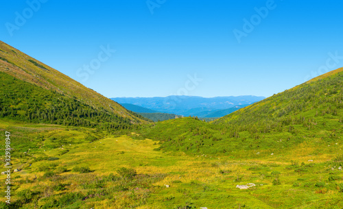 Fototapety, obrazy: Photo of green meadows and hills at summer day in Carpathian mountains