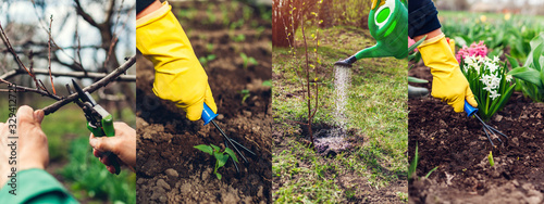 Fototapeta Spring agriculture gardening collage. Pruning trees loosening soil with hand fork watering plants taking care of flowers obraz