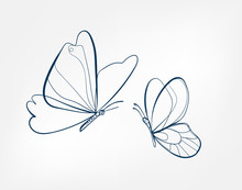 Butterfly Insect Vector Art Li...