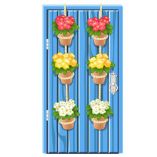Set Of Flower Pots Hanging On The Rope On Blue Vintage Wooden Door Isolated On A White Background. Vector Cartoon Close-up Illustration.