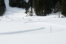 Cross Country Skiing Trail In ...