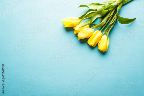 Fototapeta Yellow tulips on a blue wooden background, a bouquet of flowers, a horizontal ba