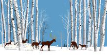 Animals In The Birch Forest