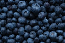Blueberry Berry. Berry Blue Ba...