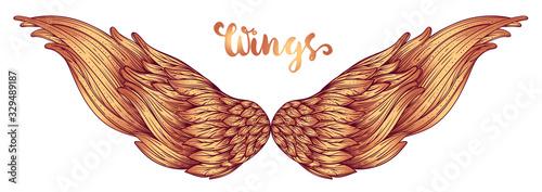 Canvastavla Angels wings