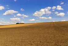 Panorama Of A Hilly Farmland W...