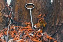 An Old Rusty Key Is Lying On T...