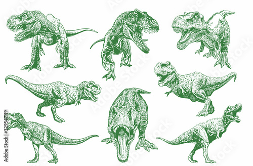 Fototapeta Graphical set of green tyrannosauruses isolated on white, vector color dinosaurs