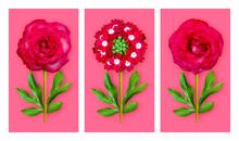Three Offbeat Flowers On A Bri...